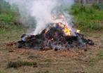 Burn Permits - Fall 2021 (Photo) featured image